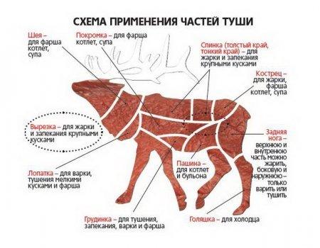 схема разделки туши свиньи