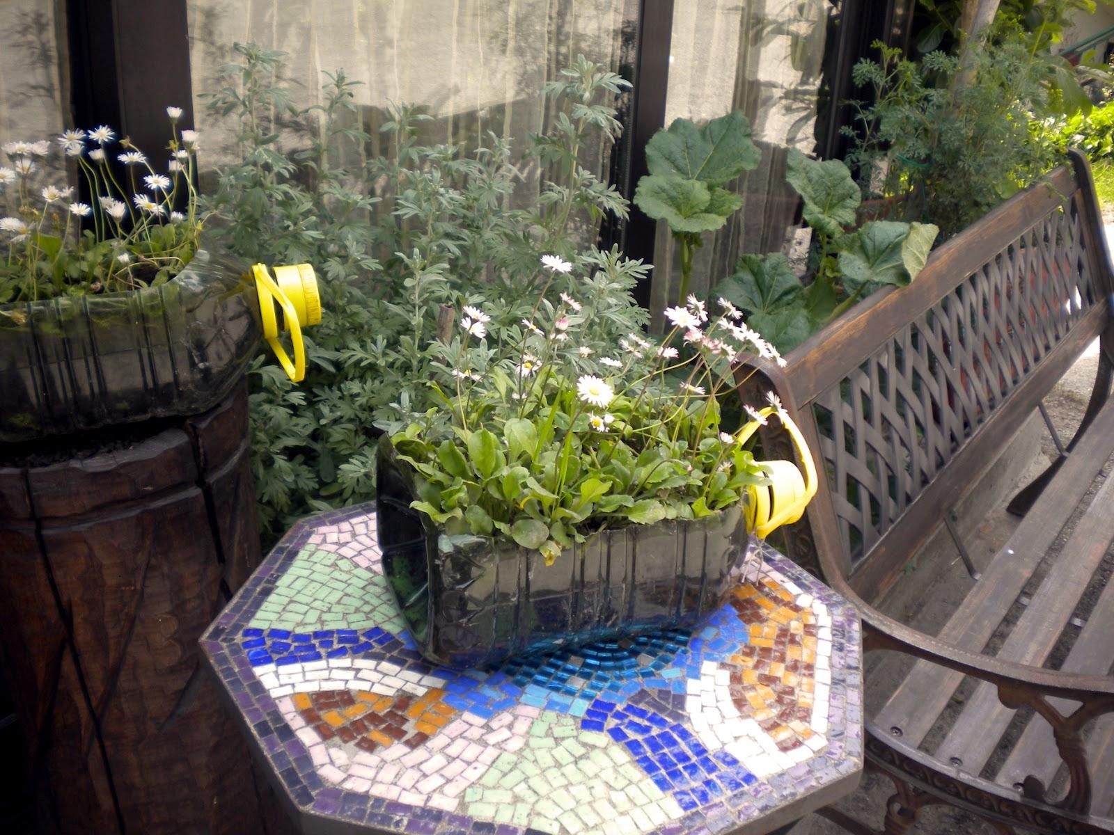 I giardini dei mestieri  la cuoca   blossom zine blog