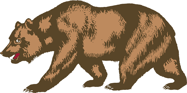 significado carta urso lenormand