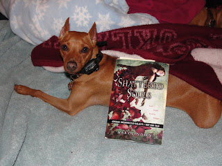 Mini Review of Shattered Souls by Mary Lindsey