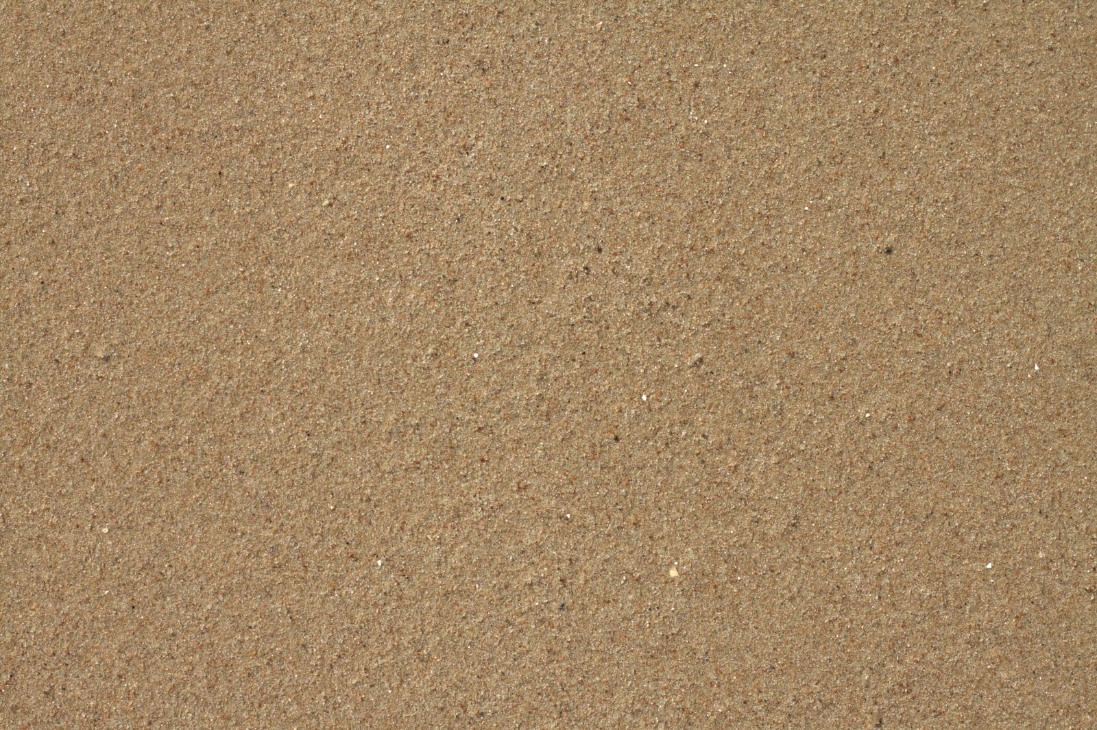 Sand beach soil ground shore desert texture ver 3