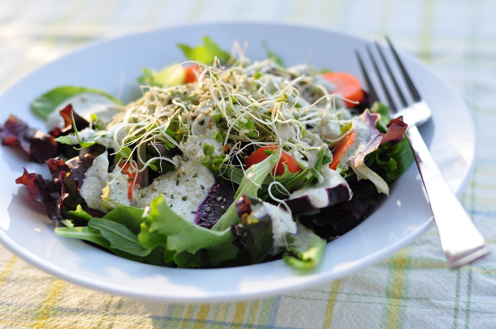Nourishing Meals: Creamy Herb Sunflower Dressing/Dip