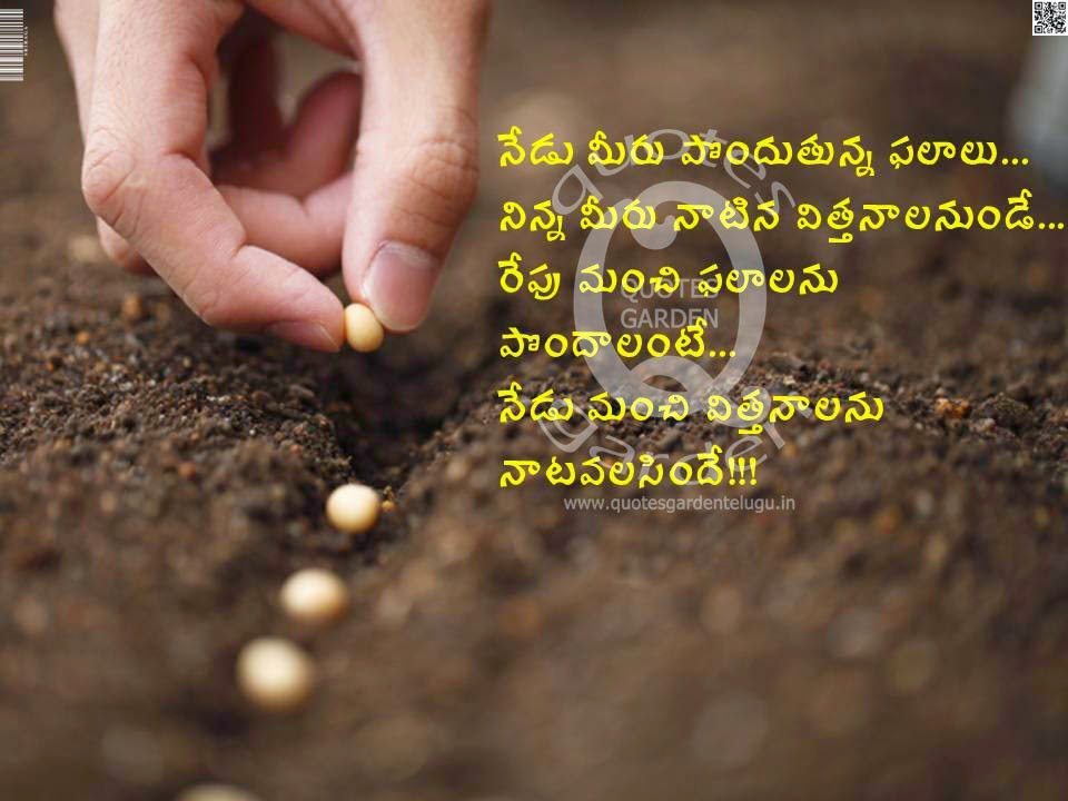 Best Telugu Whatsapp Status   Telugu Life Quotes with images