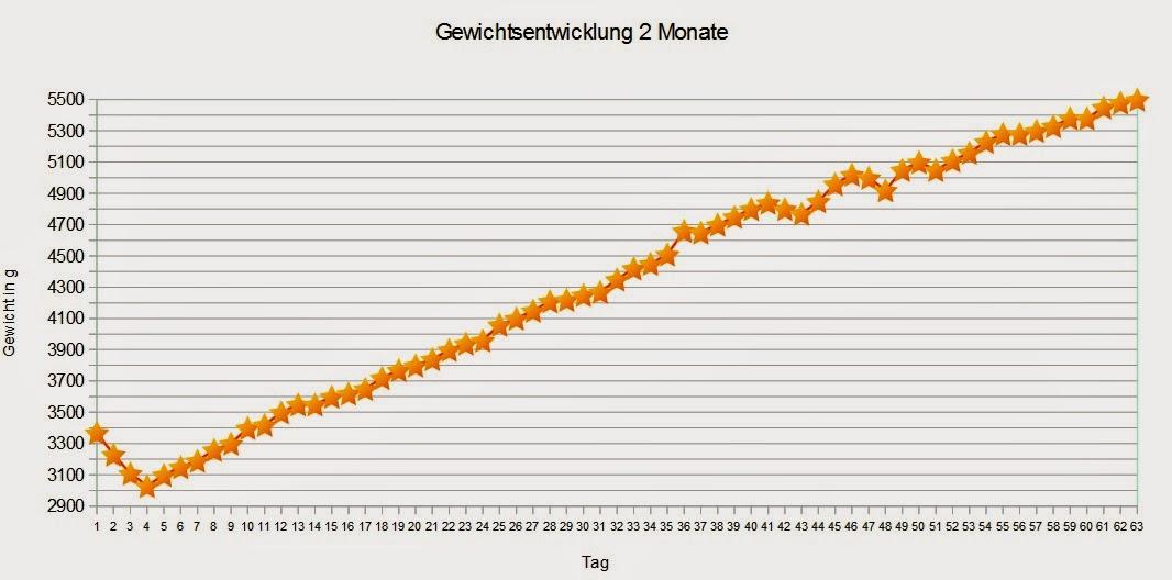 Die L 228 Stige Nachbarin Gewichtsentwicklung 2 Monat