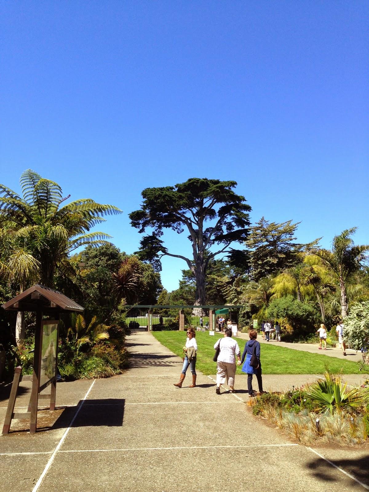 The Lents Farmer San Francisco Botanical Garden