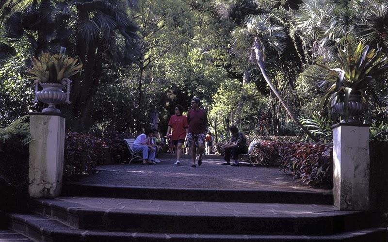Aldaba amiga jardin botanico de el puerto de la cruz for Jardin botanico de tenerife