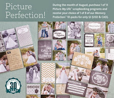 August Special - Purchase any Picture My Life Kits