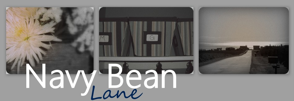 Navy Bean Lane
