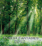 Forest Fantasies Mini Group