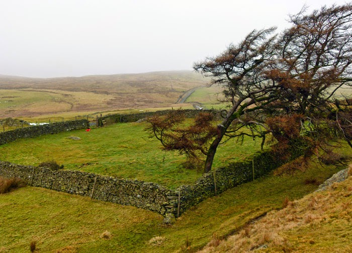 Disused burial ground, site of chapel, Firbank Fell.