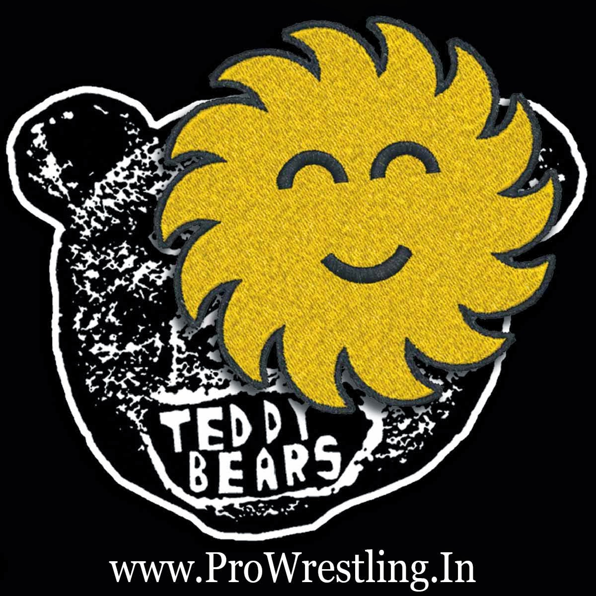 "Music » Download WWE SummerSlam 2014 2nd Official Theme Song ""Sunshine"" By ""Teddybears"" Free mp3"