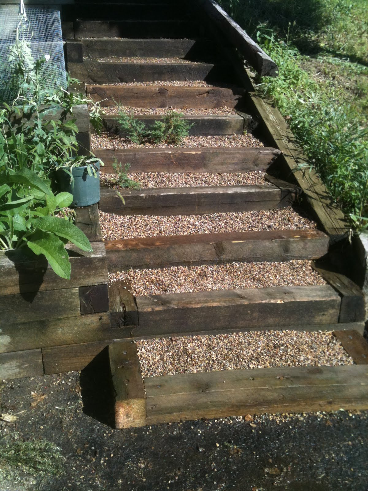 Southwoods forest gardens old timbers new steps for Garden steps designs