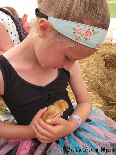 Cotswold Farm Park The Big Feastival 2013