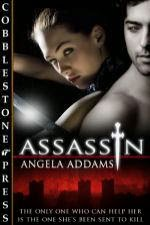 https://www.goodreads.com/book/show/12364272-assassin