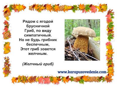 загадки о желчных грибах для детей с ответами в картинках