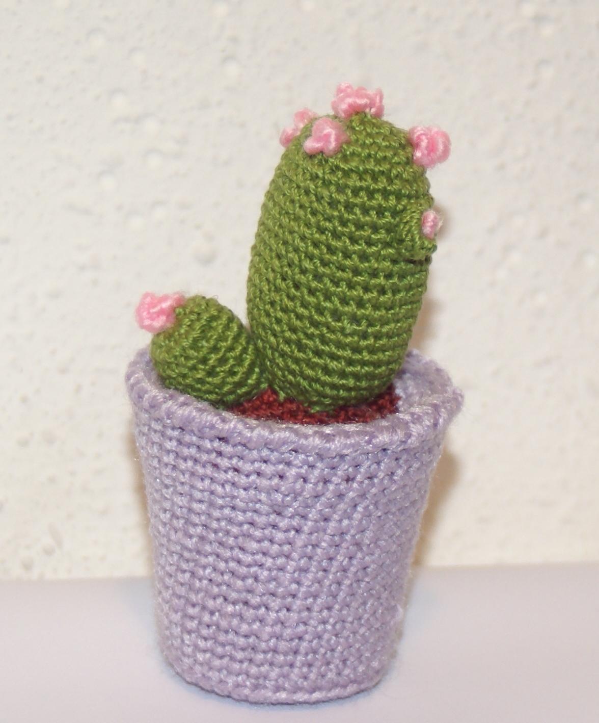 Cactus Amigurumi Venta : CACTUS AMIGURUMI