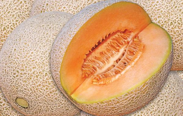 Imagenes de melon