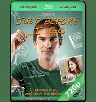 JUST BEFORE I GO (2014) WEB-DL 720P HD MKV INGLÉS SUBTITULADO