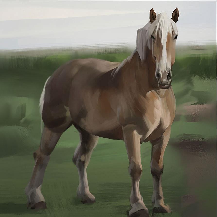[Image: 20140222_horseStudy.jpg]