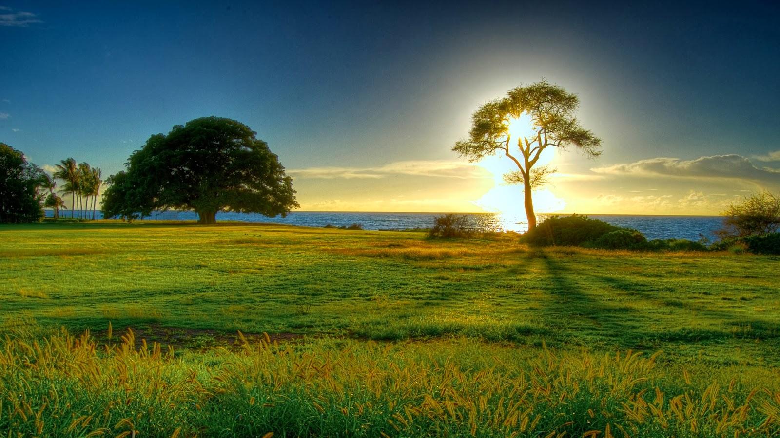 hd natural image beautiful - photo #16