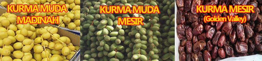 Stok Kurma