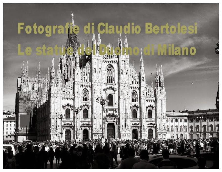 Foto di Claudio Bertolesi,  Statue del Duomo di Milano
