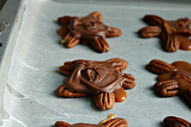 chocolate covered turtles google images chocolate covered turtles