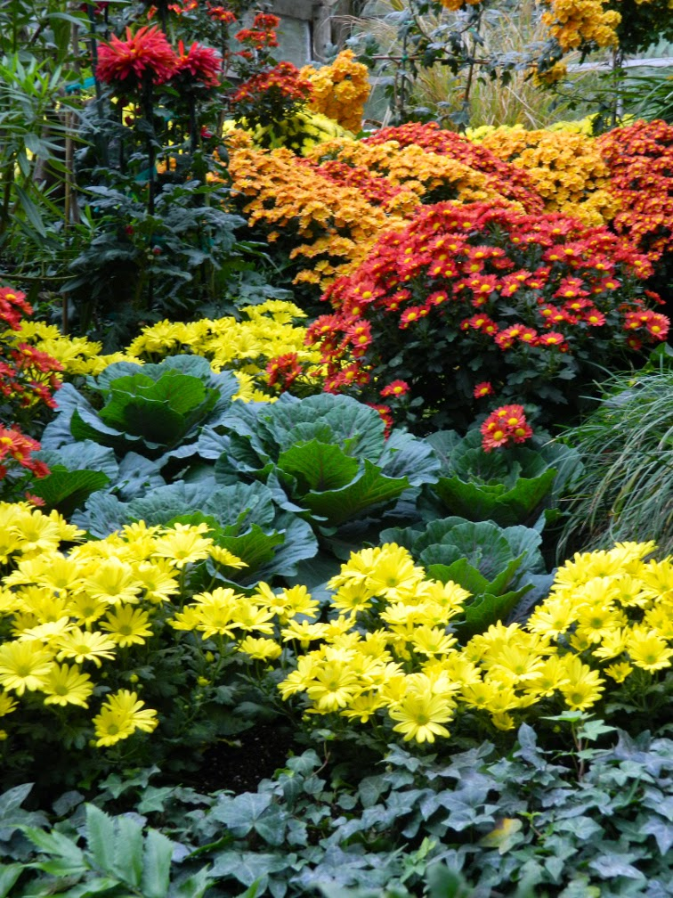 Allan Gardens Conservatory Fall Chrysanthemum Show 2014 by garden muses-not another Toronto gardening blog