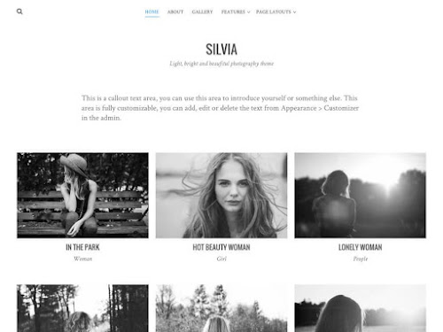 Download Tema WordPress Silvia