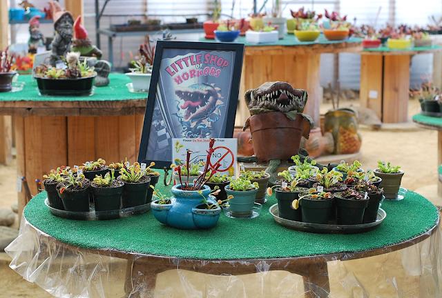 Little shop of horrors plant