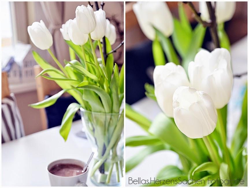 Bellas Herzenssachen Tulpen
