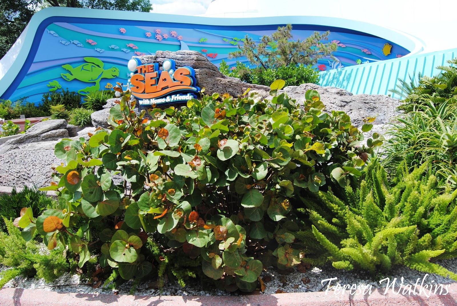 Earth Shattering Gardening: May 2015