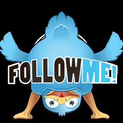 Cara Mendapat 2000 Twitter Followers
