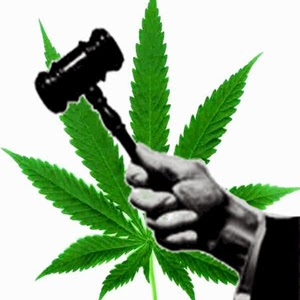 State Marijuana Legalization Approaching Critical Mass