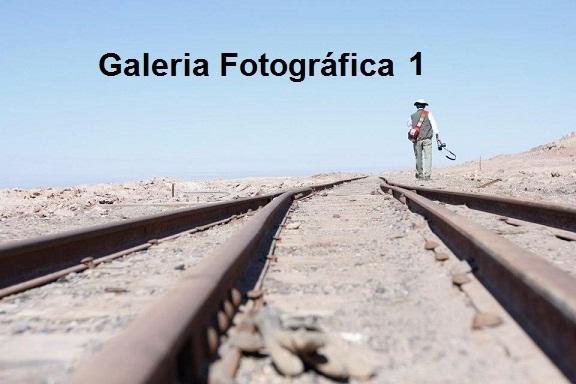 Galeria de Fotos N°1 - TRENES EN LA WEB