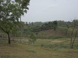 tanah kebun dijual murah FANTASTIS, KEBUN DI JAWA TENGAH DAN JABAR  SEHARGA 4 RIBU AN PER METER