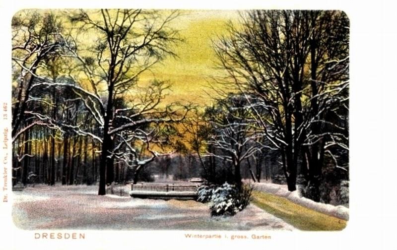 Winterpartie im großen Garten, Dresden
