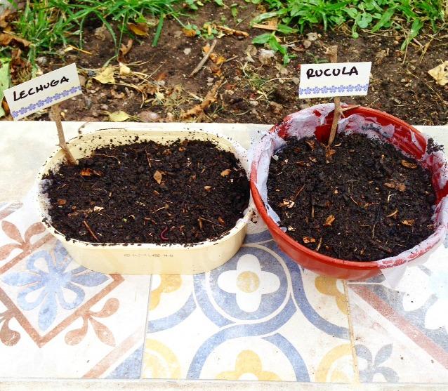 Huerta organica - Hacer almacigos