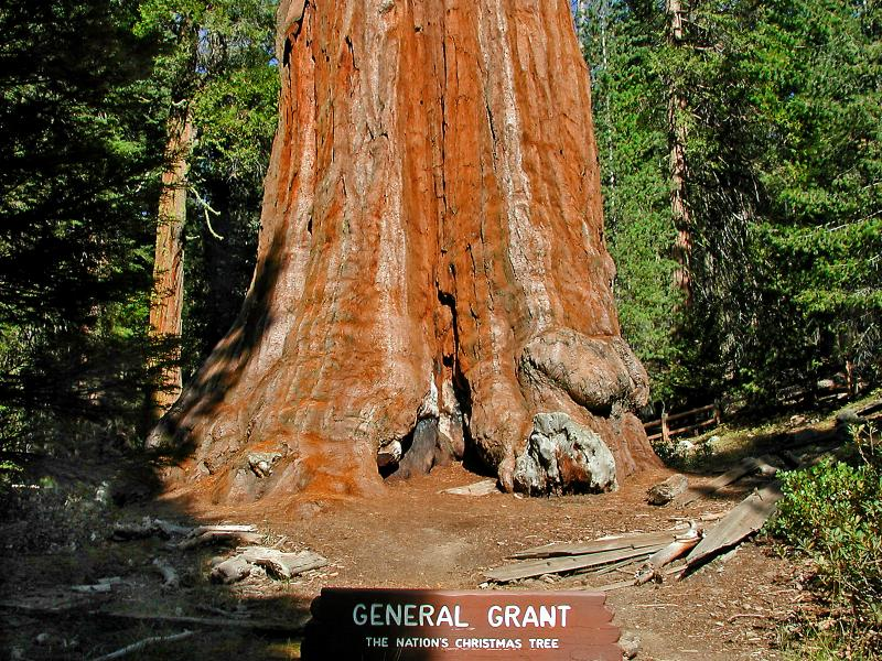 kings canyon national pk bbw personals Plan your visit to sequoia & kings canyon national parks with everything from  fine hotels and restaurants to classic tent cabins spend your time among the.