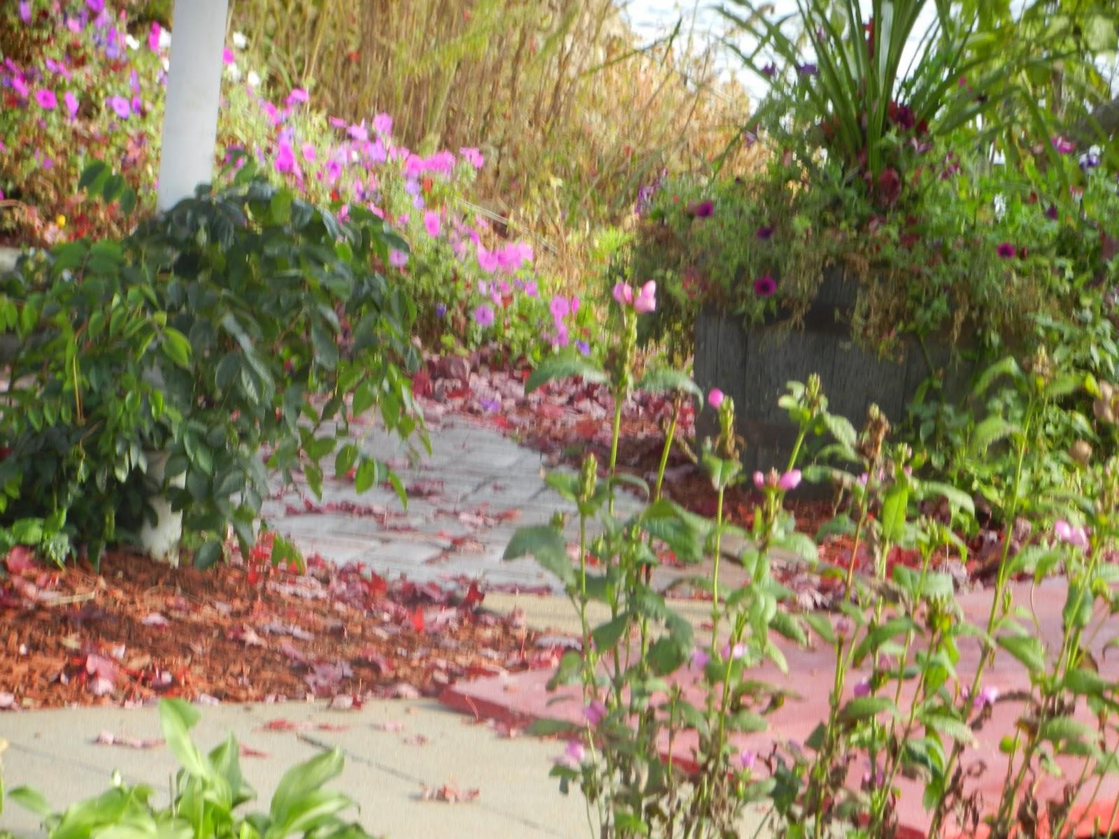 leclaire illinois gardens