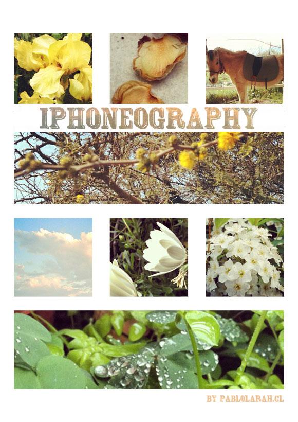 iPhoneography: October 5 2012 Selection,pablolarah, Pablo Lara H blog