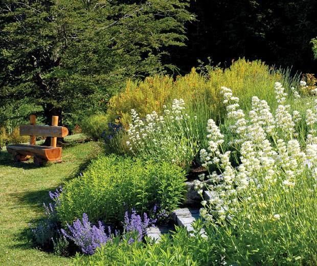 Arte y jardiner a jardines secos de bajo mantenimiento for Jardines de bajo mantenimiento