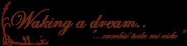 Waking a dream..