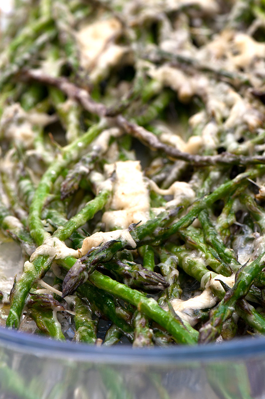 Wild asparagus close up
