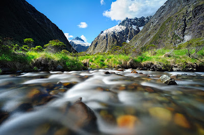 Arroyo del mono - Monkey Creek (Ríos y Paisajes de Nueva Zelanda)