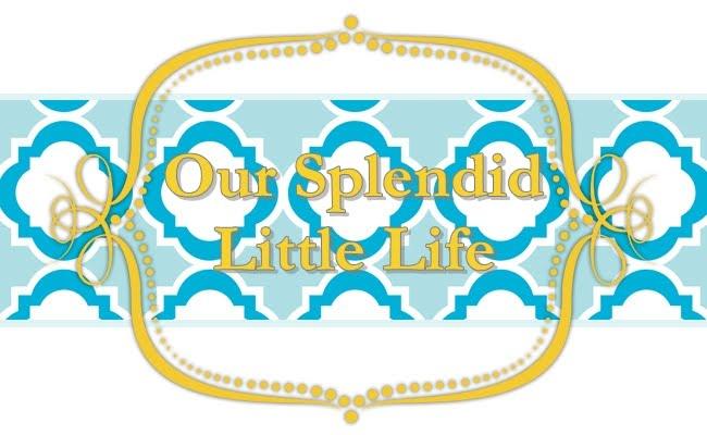 Our Splendid Little Life