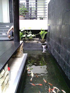 KOLAM KOI - GAZEBO BATU ALAM - PONDOK INDAH