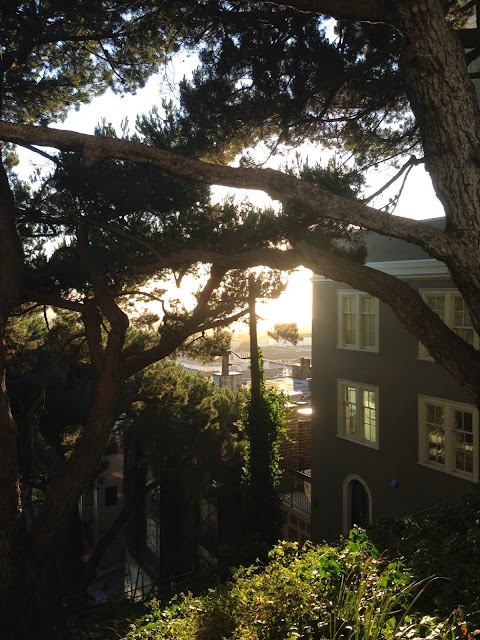 Sunset over Russian Hill, San Francisco, June 2014 by BK Mair
