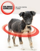 COLEIRAS VERMELHAS