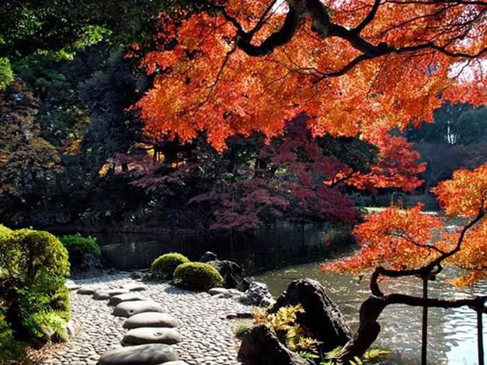 Most Beautiful Gardens of The World